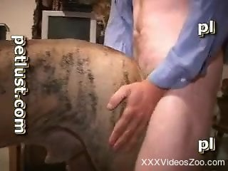 Male with very hard and fat dick enjoys intensive sex with a dog