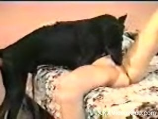 Retro bestiality video with a brunette and her dog