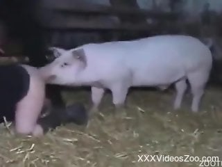 Twisted pig shoves its dick in this zoophile pussy