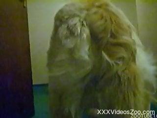 Teenage girl baits her dog into fucking her hard