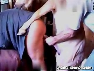 Horse fucks the busty mature woman until she falls exhausted
