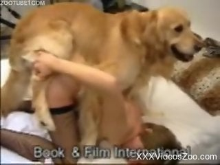 Fishnets-wearing housewife gets fucked by a dog