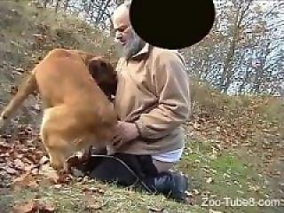 Bison Fuck