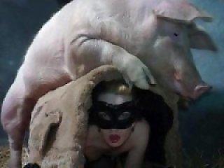 Free Animal XXX Videos & Zoo Sex Clips - Bestiality Porn